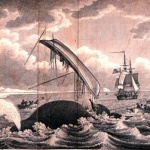300px-Whaling-dangers_of_the_whale_fishery (2)